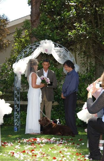John and Kim St.Claire, at their beautiful wedding in north San Diego County.  Their dogs served as...