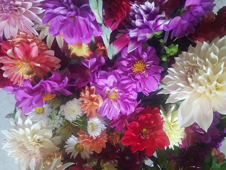 Tmx 20170826 150016 51 969711 Farmingdale, NJ wedding florist