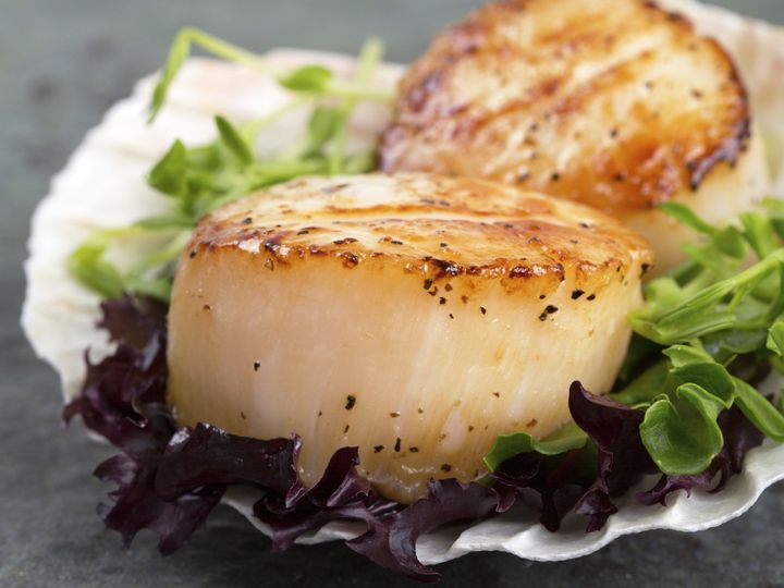 Tmx 1396452267751 Scallops In Shel Milford, CT wedding catering