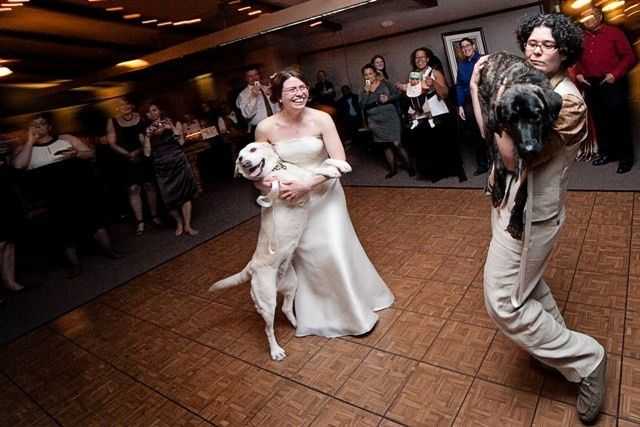 Tmx 1458072081003 Gay Fort Worth, TX wedding dj