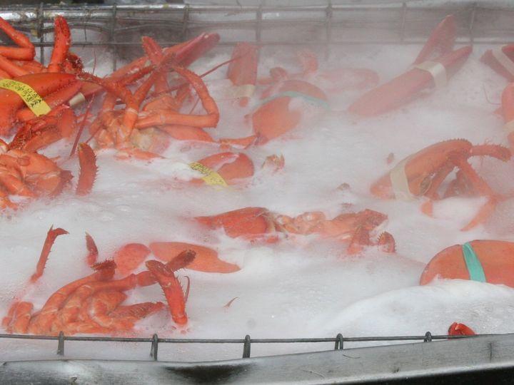 Tmx 1480691875075 Lobster Vat 2 White River Junction wedding catering