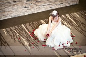 Cynthia Starr Photography
