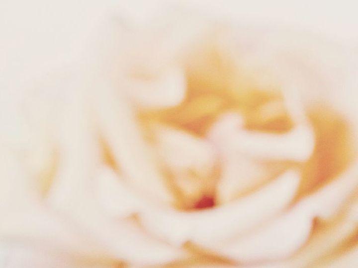 Tmx 1414133561353 01d51c09cb2def6491431ae041e55198 Clive wedding jewelry