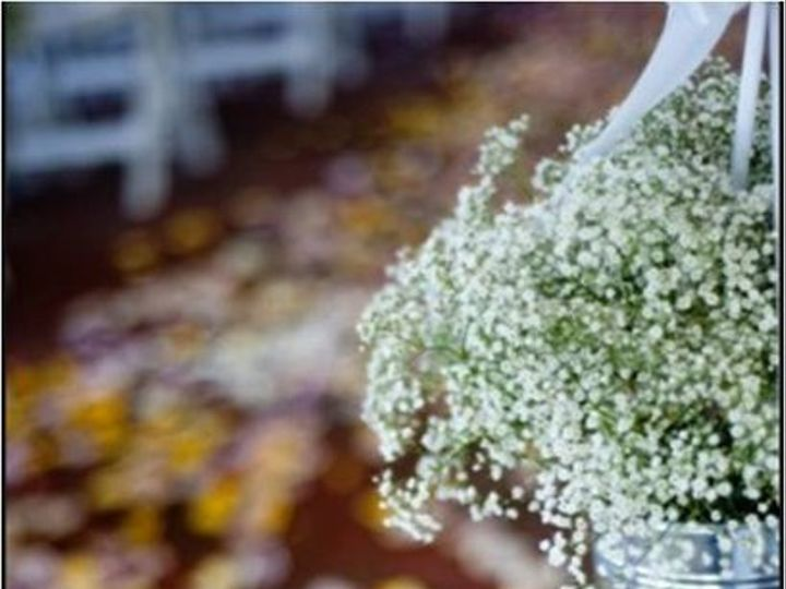 Tmx 1289414801024 Picture47 Havre De Grace, Maryland wedding florist