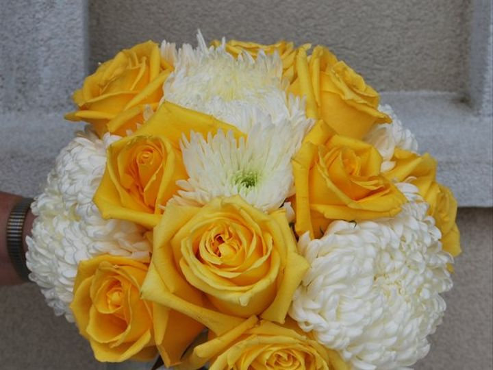 Tmx 1308082023324 DSC0003 Havre De Grace, Maryland wedding florist