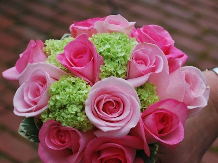 Tmx 1308155234406 DSC0010 Havre De Grace, Maryland wedding florist