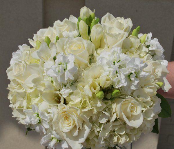 Tmx 1308155274312 DSC0012 Havre De Grace, Maryland wedding florist