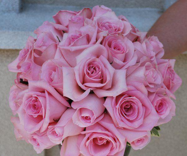 Tmx 1308155361484 DSC0017 Havre De Grace, Maryland wedding florist
