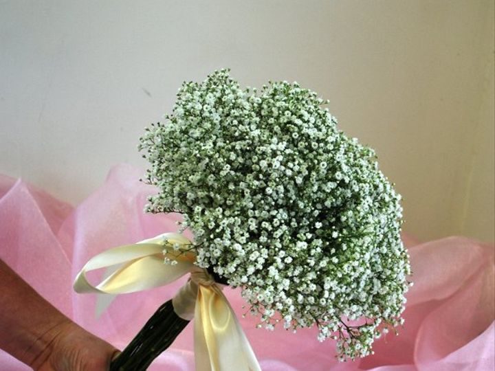 Tmx 1308155487984 DSC0134 Havre De Grace, Maryland wedding florist