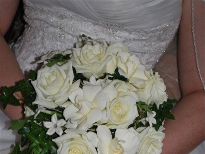 Tmx 1308155543046 DSC01392 Havre De Grace, Maryland wedding florist