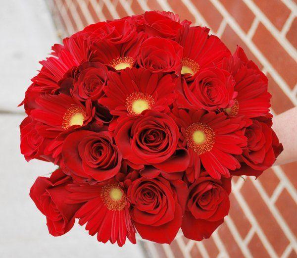 Tmx 1308155583171 DSC0260 Havre De Grace, Maryland wedding florist