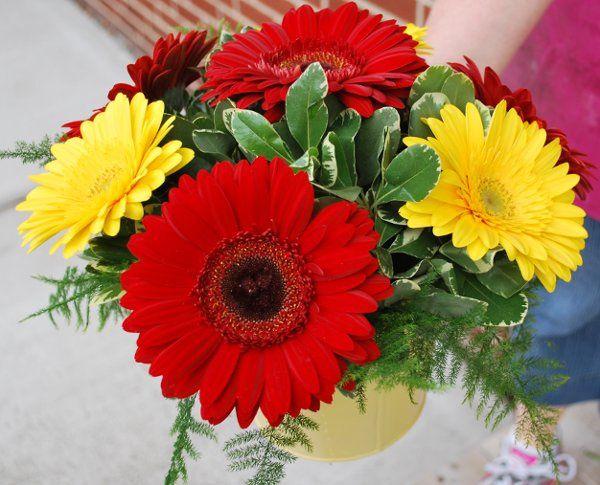 Tmx 1308155626625 DSC0262 Havre De Grace, Maryland wedding florist