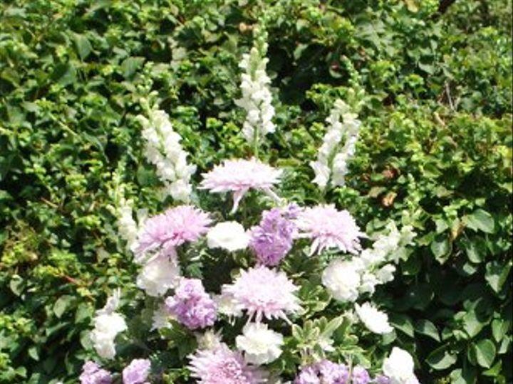 Tmx 1311015665560 DSC0103 Havre De Grace, Maryland wedding florist