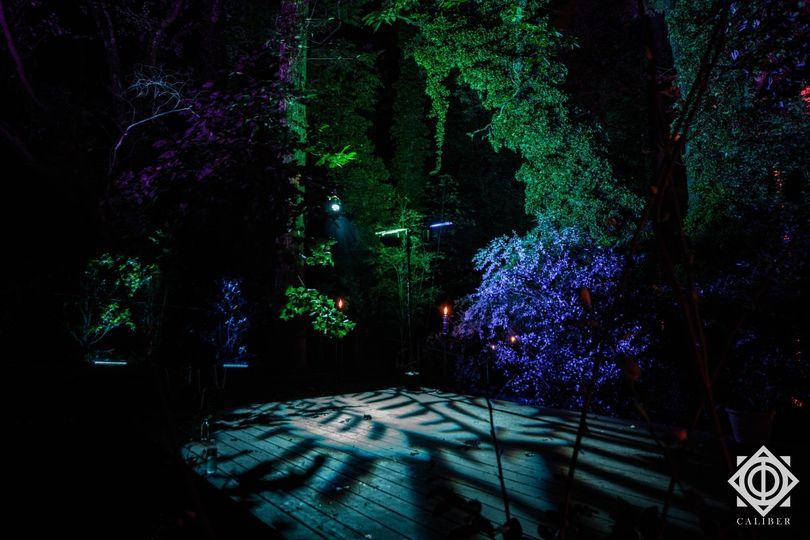 Landscaped Lighting Display
