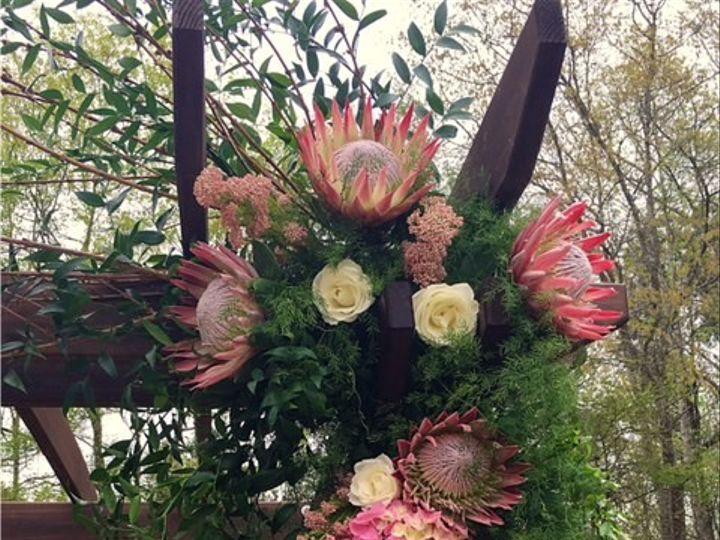 Tmx 1460467266789 Pergola Close Up Holly Springs, North Carolina wedding florist
