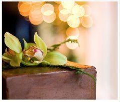Tmx 1316807750732 Screenshot20110923at3.49.41PM Wilton wedding florist