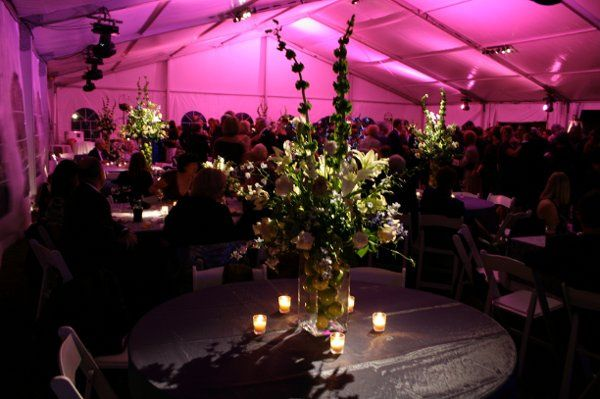 Tmx 1338310338698 IMG4158 Virginia Beach, Virginia wedding eventproduction