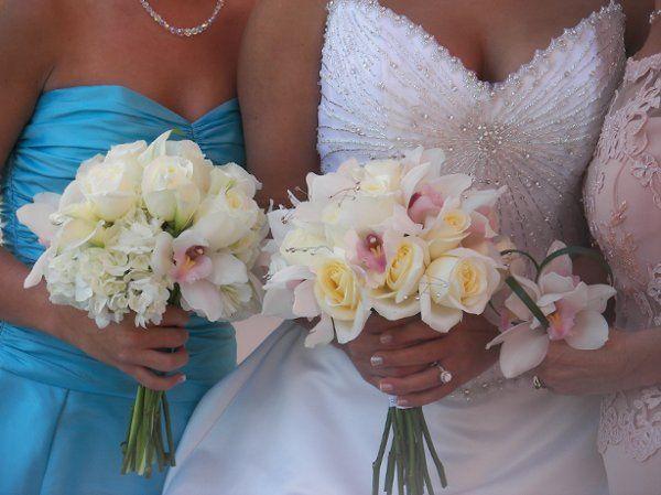 Tmx 1209306439686 Allmypictures815 Tampa, FL wedding florist