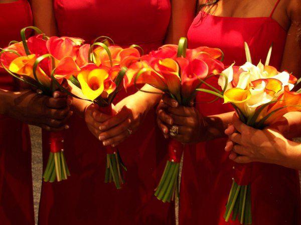 Tmx 1209306764749 Weddingandpartyflorals198 Tampa, FL wedding florist