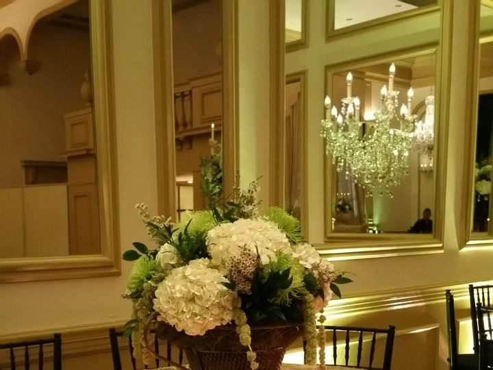 Tmx 1458388031891 2015 10 24 19.33.04 Tampa, FL wedding florist