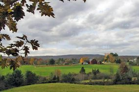 Twin Orchard Farm