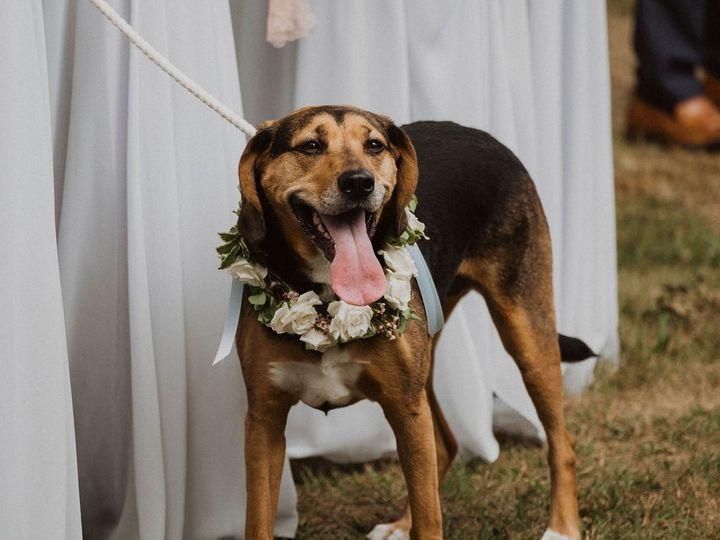 Tmx  Dsf9041 51 975221 1572975986 Tappan, NY wedding florist