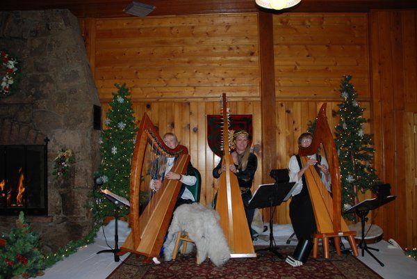 Tmx 1271895649448 Threeharps Allenspark wedding ceremonymusic