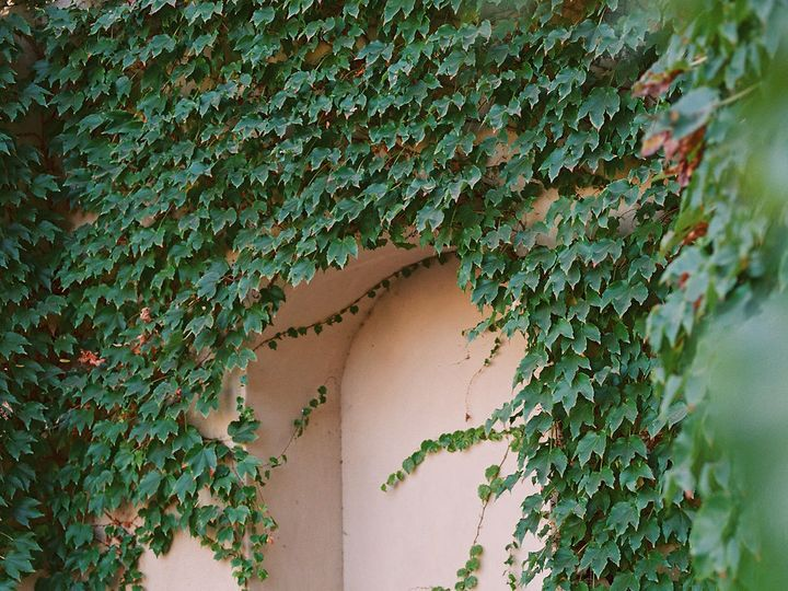 Tmx Akp Los Robles Greens Fall Editorial 39 51 145321 162637986396561 Thousand Oaks, CA wedding venue