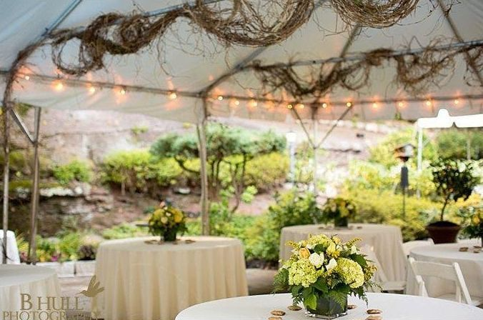 Tmx 1529044412 3a875581d43fb1df 1529044411 D96ce91ae7d2c916 1529044408181 3 33 Little Ferry wedding planner
