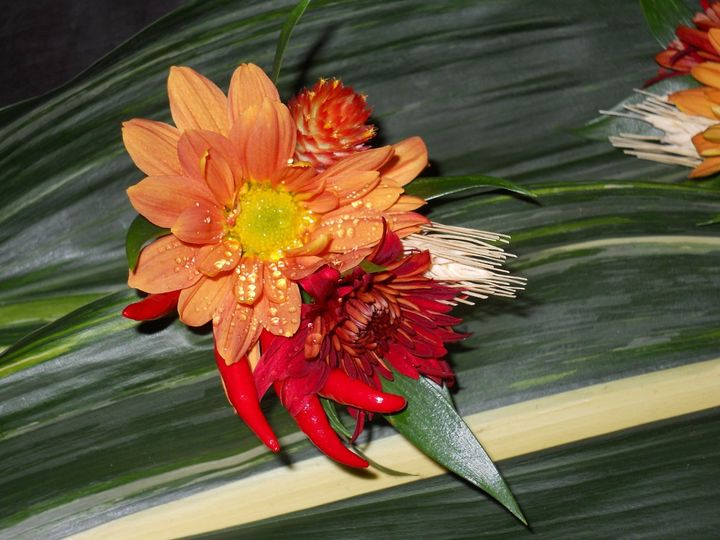 Boutonniere with chili peppers, mums, daisies and gomphrena.