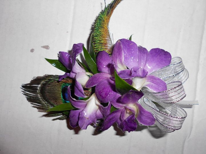 Wrist corsage with dendrobium orchids and peacock feathers