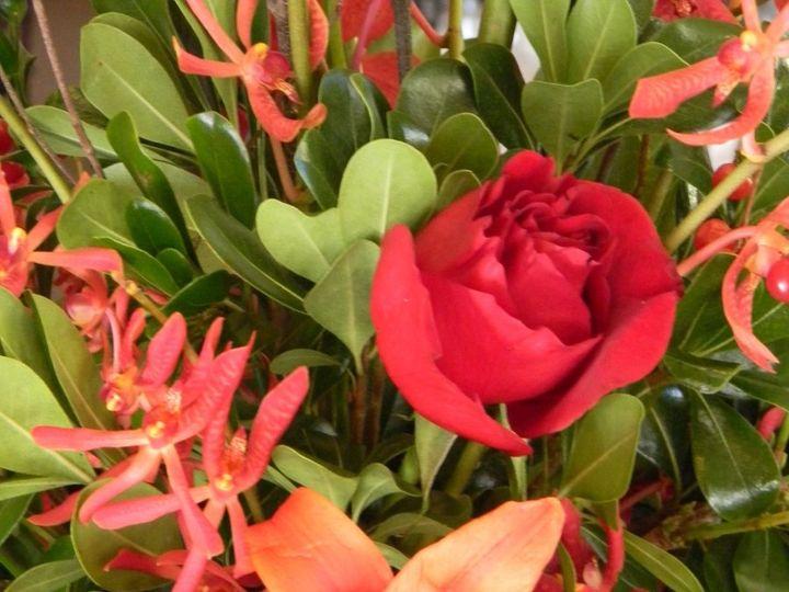 Tmx 1340726636715 Greekwedding006 Annapolis, Maryland wedding florist