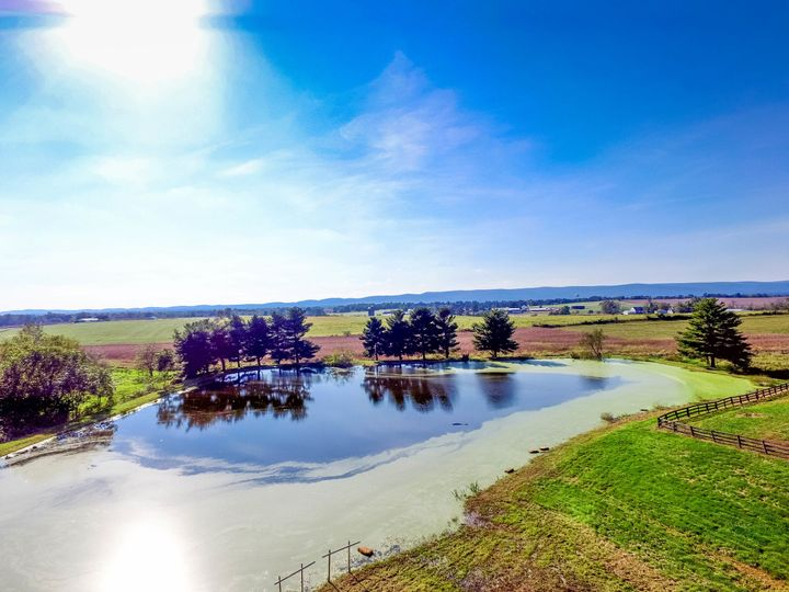 Pond and the fields