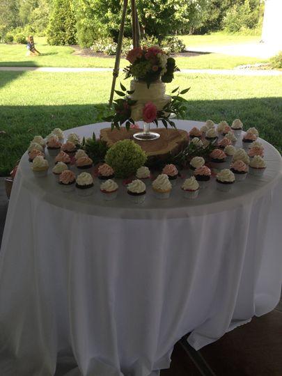 Cake or Cupcakes anyone?