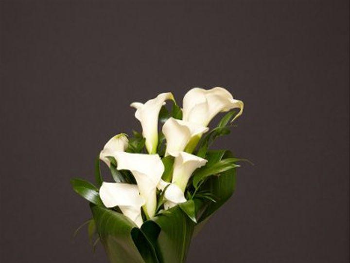 Tmx 1296073901530 IMG1848 Waynesboro wedding florist