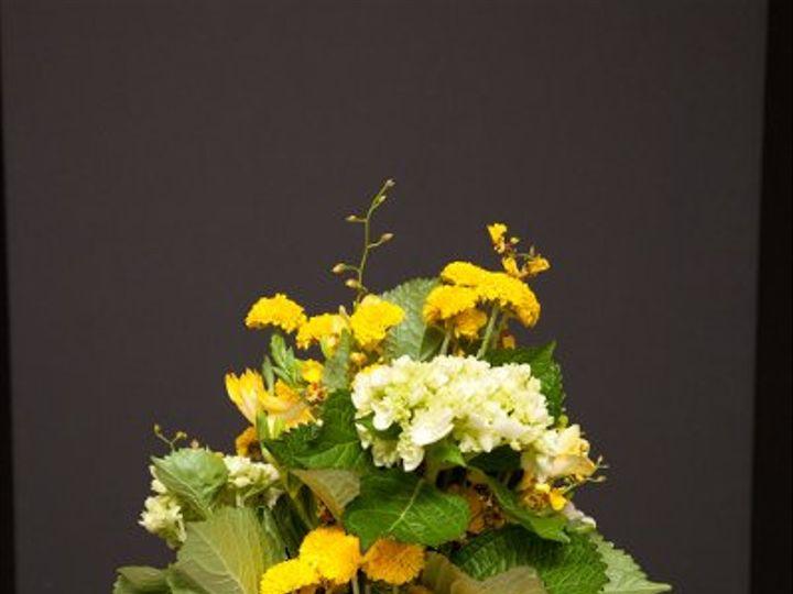 Tmx 1296073987514 IMG1849 Waynesboro wedding florist