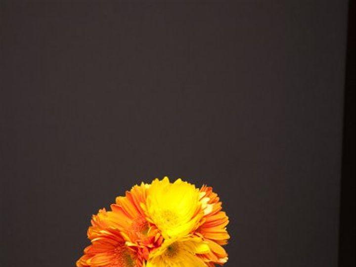 Tmx 1296074164076 IMG1856 Waynesboro wedding florist