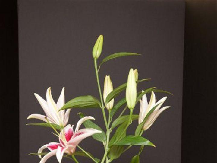 Tmx 1296074498686 IMG1868 Waynesboro wedding florist