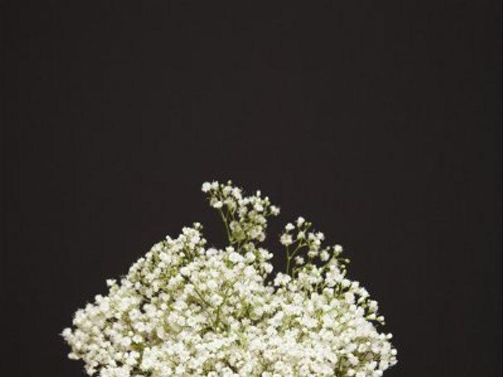 Tmx 1296074756733 IMG1880 Waynesboro wedding florist