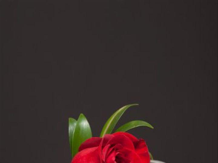 Tmx 1296074820967 IMG1882 Waynesboro wedding florist