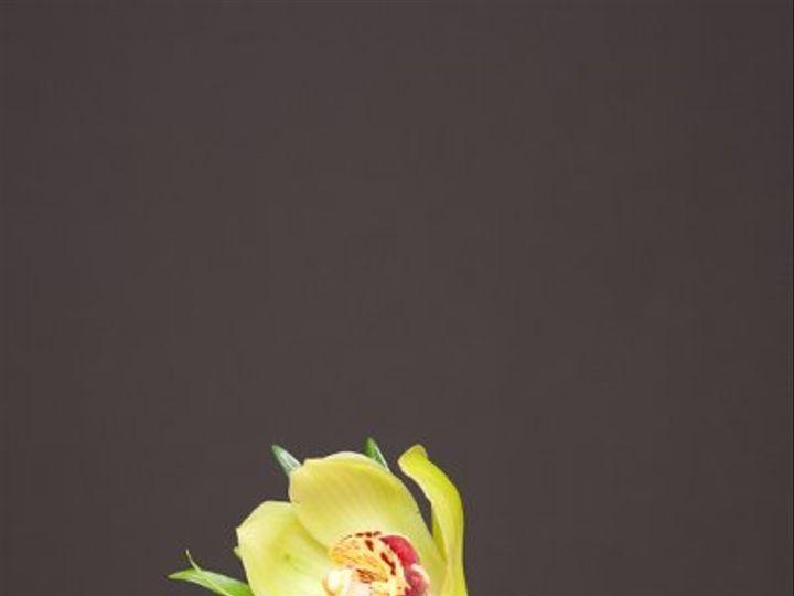 Tmx 1296074970858 IMG1891 Waynesboro wedding florist