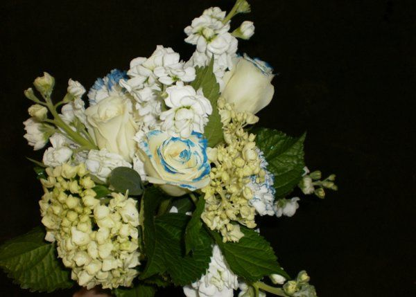 Tmx 1296075544061 StockRoseBouquet1 Waynesboro wedding florist