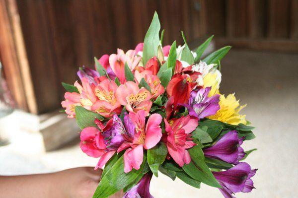 Tmx 1296076686467 IMG3062 Waynesboro wedding florist