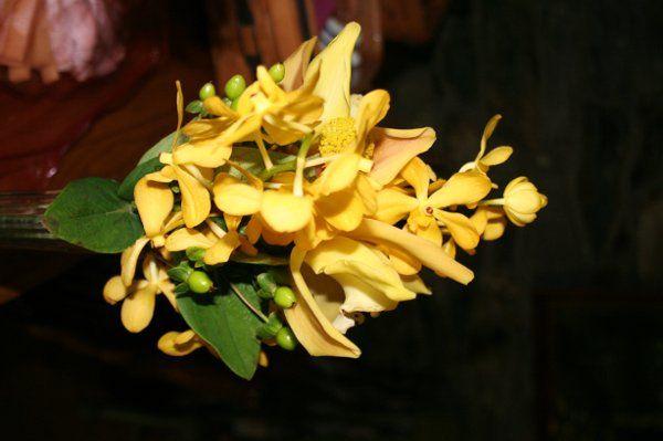 Tmx 1296076810858 IMG3067 Waynesboro wedding florist