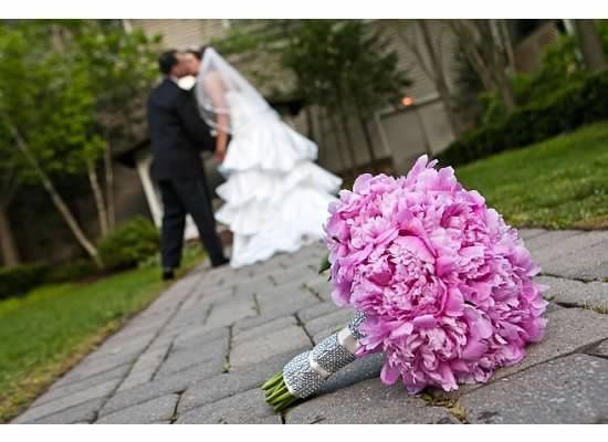 Tmx 1347033515518 NoLimitEvents014 Saddle Brook wedding planner