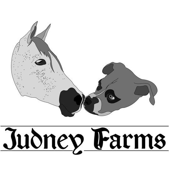 Judney Farms