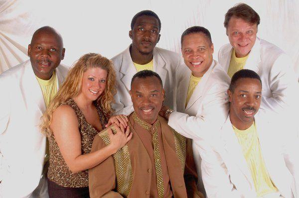 Band Whitesuits