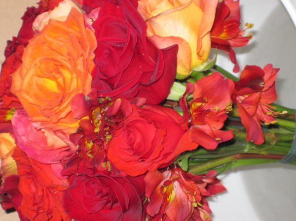 Tmx 1329154167528 IMG1363 Fort Worth wedding florist