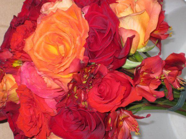 Tmx 1329154226715 IMG1367 Fort Worth wedding florist