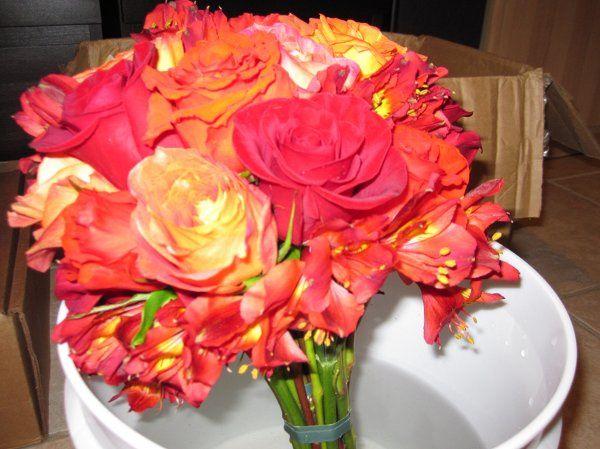 Tmx 1329154257981 IMG1369 Fort Worth wedding florist